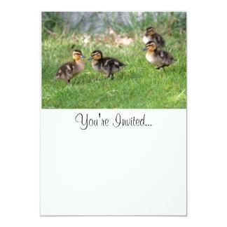 """El bebé Ducks la foto Invitación 5"""" X 7"""""""