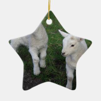 El bebé lindo del rancho de la granja hermana el adorno de cerámica en forma de estrella