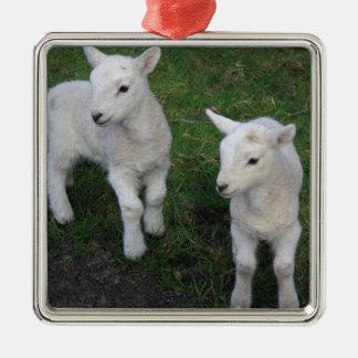 El bebé lindo del rancho de la granja hermana el adorno cuadrado plateado
