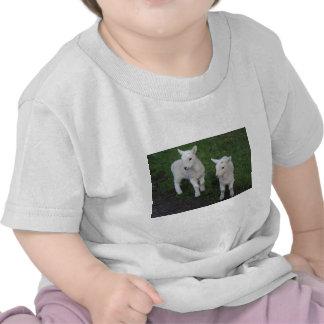 El bebé lindo del rancho de la granja hermana el camisetas