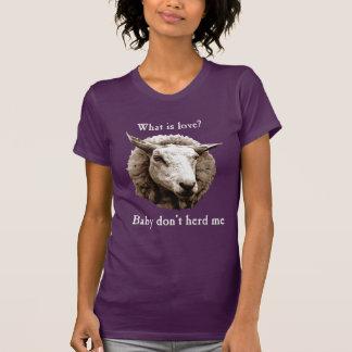El bebé no me reúne las ovejas polera