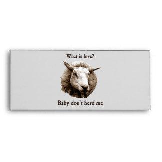 El bebé no me reúne las ovejas