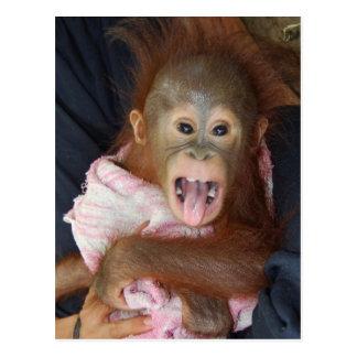 El bebé rojo lindo del pelo pega hacia fuera la postales