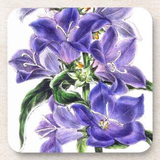 El Bellflower botánico florece el práctico de Apoyavasos