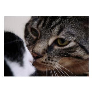 El besarse de dos gatos tarjetas de visita grandes