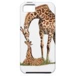 El besarse de la jirafa y del becerro del bebé iPhone 5 Case-Mate carcasa