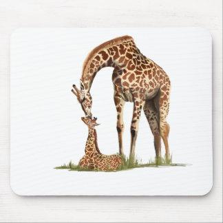El besarse de la jirafa y del becerro del bebé
