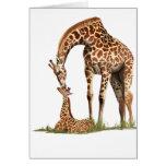 El besarse de la jirafa y del becerro del bebé tarjeta de felicitación