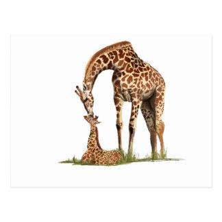El besarse de la jirafa y del becerro del bebé tarjeta postal
