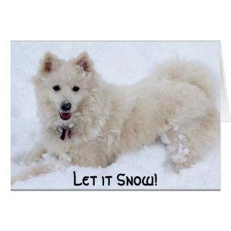 ¡el biancasnow, lo dejó nevar! tarjeton