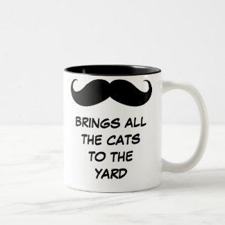 El bigote trae todos los gatos a la taza de la yar
