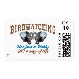 El Birdwatching