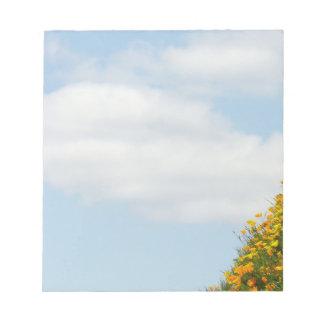 El blanco del cielo azul se nubla verano único de blocs
