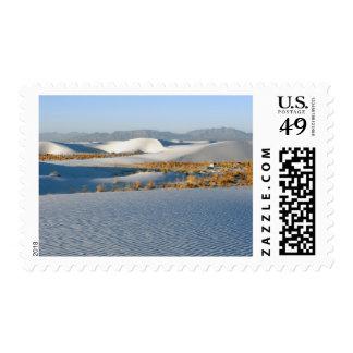 El blanco enarena el monumento nacional dunas tra
