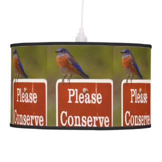 El Bluebird, conserva por favor