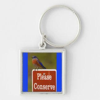 El Bluebird, conserva por favor Llavero Cuadrado Plateado