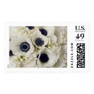 El boda blanco de la anémona florece sellos