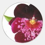 El boda púrpura florece los sellos del sobre