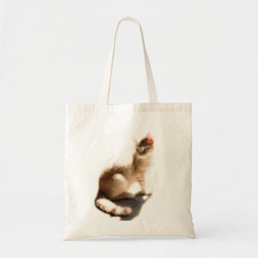 El bolso del gato bolsa