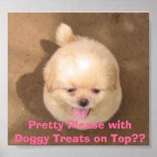 ¿El bonito satisface con las invitaciones del perr Póster