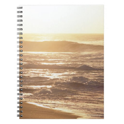 El borde del agua (tarde) 2 libreta espiral