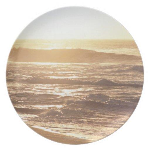 El borde del agua (tarde) 2 platos