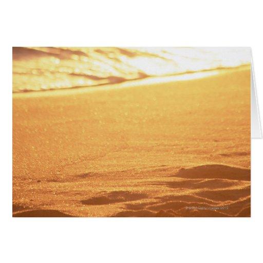 El borde del agua (tarde) 3 tarjeta de felicitación