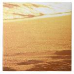 El borde del agua (tarde) 3 teja