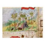 El bosque canadiense tarjetas postales