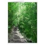 El bosque de bambú felicitaciones