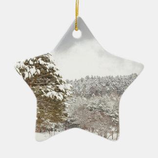 El bosque debajo de la nieve en el invierno adorno navideño de cerámica en forma de estrella