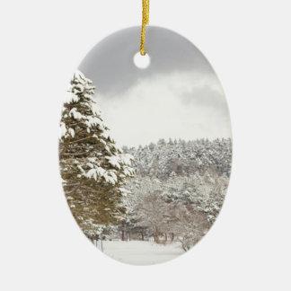El bosque debajo de la nieve en el invierno adorno navideño ovalado de cerámica