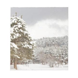 El bosque debajo de la nieve en el invierno blocs