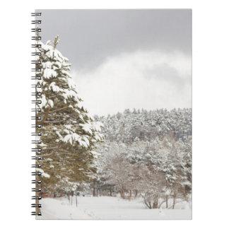 El bosque debajo de la nieve en el invierno libretas