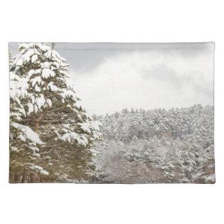 El bosque debajo de la nieve en el invierno mantel