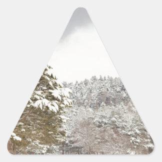 El bosque debajo de la nieve en el invierno pegatina triangular