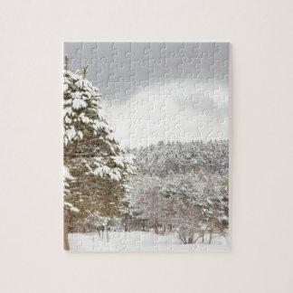 El bosque debajo de la nieve en el invierno puzzle