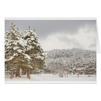 El bosque debajo de la nieve en el invierno tarjeta de felicitación