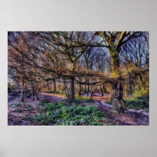 El bosque encantado 1 póster