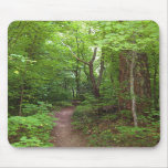El bosque encantado (3) Mousepads Alfombrillas De Raton