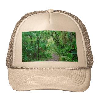 El bosque encantado de la Florida Gorros Bordados