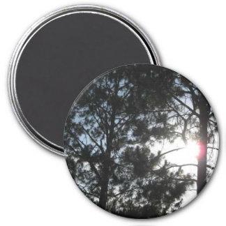 El bosque imán redondo 7 cm