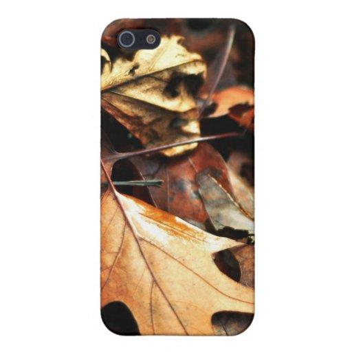 El bosque se descolora lejos caja de la mota iPhone 5 funda