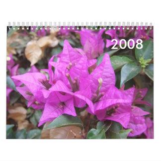 El Bougainvillea rosado florece el calendario 2008