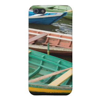 El Brasil, el Amazonas, Alter hace Chao iPhone 5 Protectores