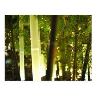 El brillar intensamente de bambú. Tokio, Japón Tarjetas Postales