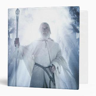 El brillar intensamente de Gandalf