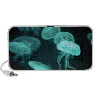 el brillar intensamente de los pescados de jalea PC altavoces