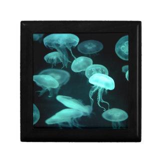 el brillar intensamente de los pescados de jalea cajas de regalo