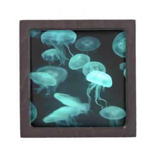 el brillar intensamente de los pescados de jalea caja de regalo de calidad